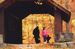 Autumn Walk through Covered Bridge